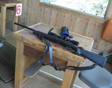 Gun1_3