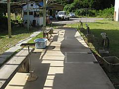 Syadaiyoko