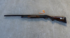 Dscn4202